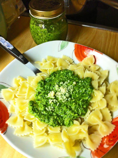 yummy pesto with mountain cheese and wild garlic