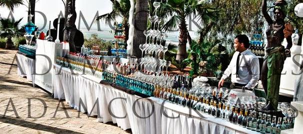 cocteleria en sevilla para bodas