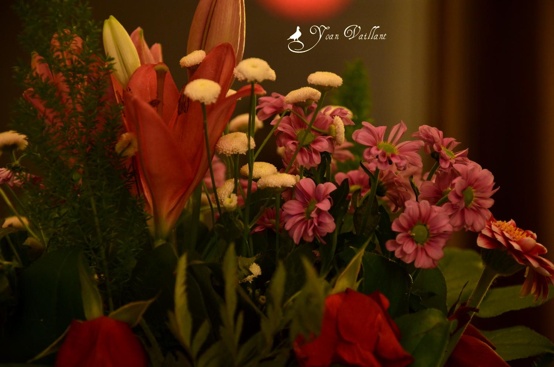 Feeling good in a picture des fleurs pour la saint valentin - Fleur saint valentin ...