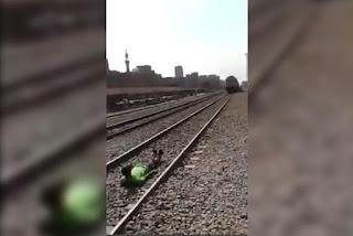 شاب مصري يلقي بنفسه أسفل القطار ويخرج سالمًا