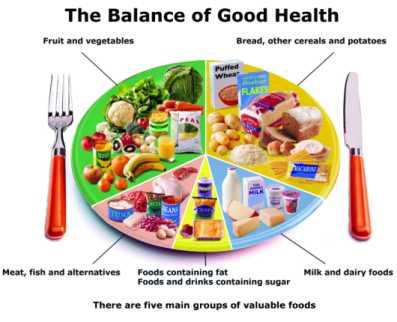 Mati-Biology: Blog # 6 Food Pyramid