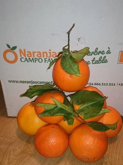 Naranjas campo faves del arbol a tu mesa mis cositas - Naranjas del arbol a la mesa ...