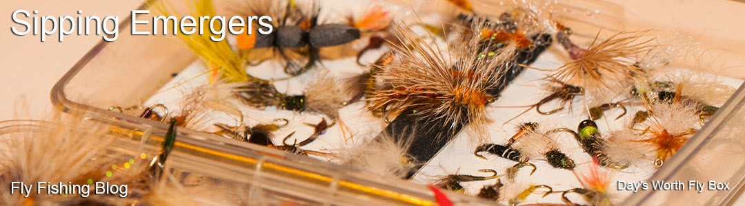 Fly Fishing Blog Sipping Emergers