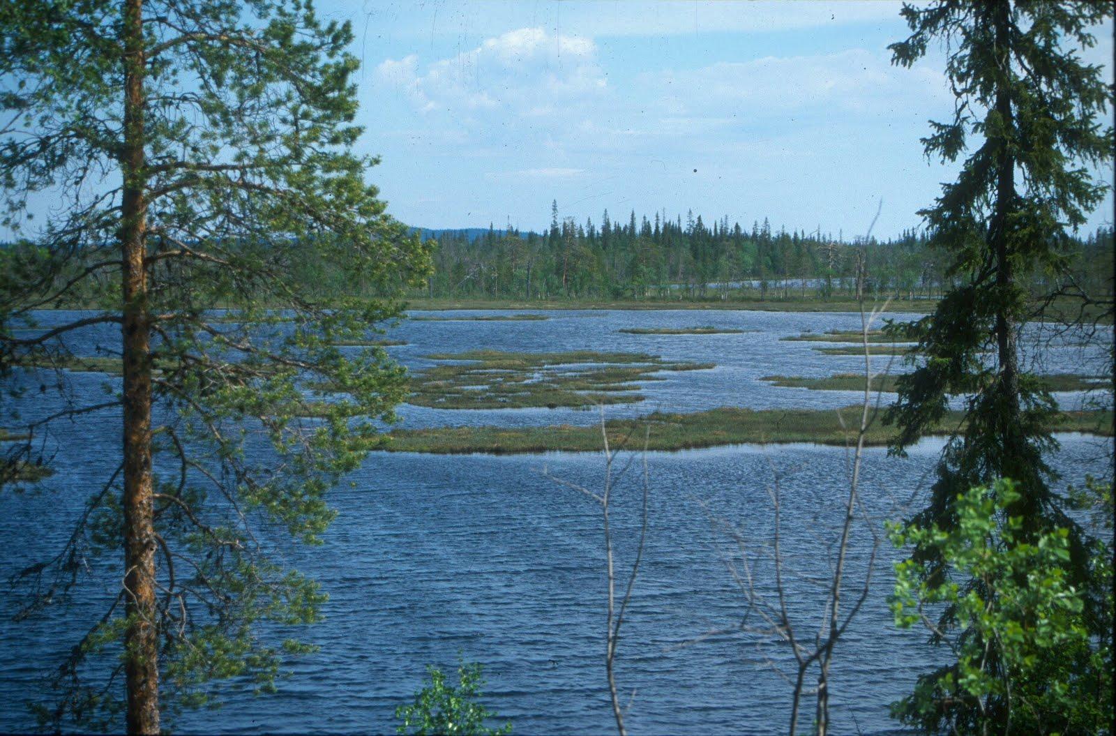 http://1.bp.blogspot.com/-My846YlvQkk/TlxbmCzR25I/AAAAAAAACjc/BmiIirnZgzg/s1600/BorealLake_Finland.jpg