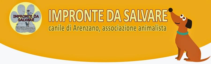 Canile di Arenzano, Impronte da Salvare