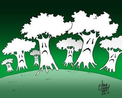 Dia 05 de junho é Dia do Meio Ambiente