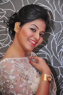 Anjali latest Glamorous pics in saree 006