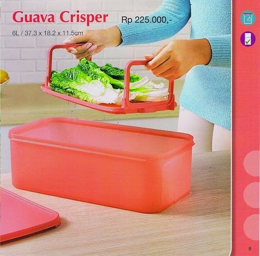 Guava Crisper Tupperware