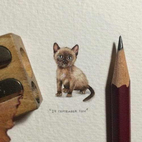 07-Kitten-Lorraine-Loots-Miniature-Paintings-Commemorating-Special-Occasions-www-designstack-co