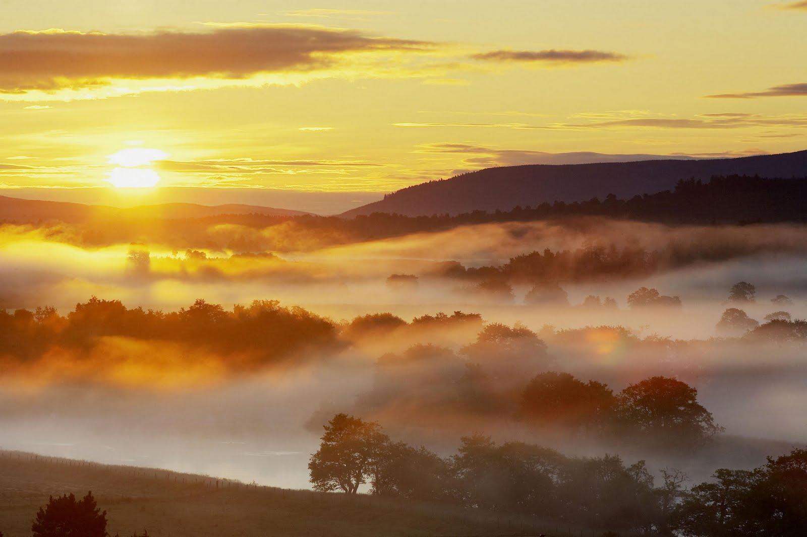 Free wallpaper yellow sky sunset wallpaper for Morning sunrise images