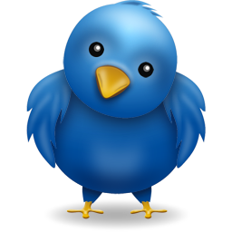 ¡Follow me on twitter!