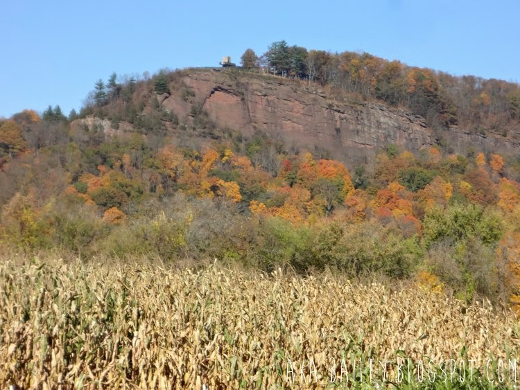 View of Mount Sugarloaf from Mike's Maze in Sunderland