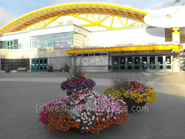 Huge planters filled with multicolored flowers greet us at the arena