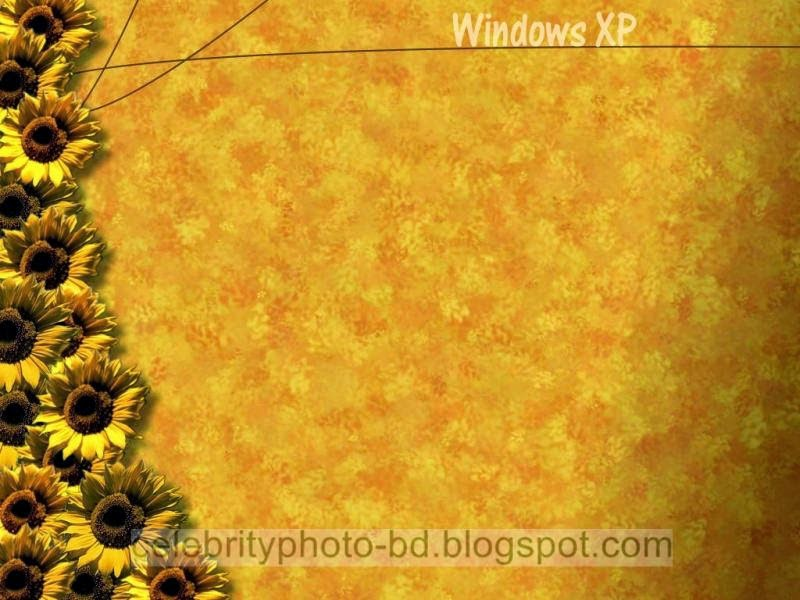Latest%2BWindows%2BXP%2BWallpapers%2BHD%2BCollection109