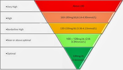 Understanding Cholesterol and Normal LDL and HDL Levels