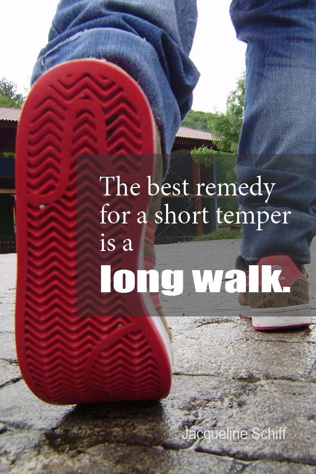 visual quote - image quotation for EMOTION - The best remedy for a short temper is a long walk. - Jacqueline Schiff
