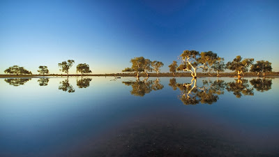 A billabong in Wooleen Station, Western Australia (© Davide Scagliola/Aurora Photos) 431