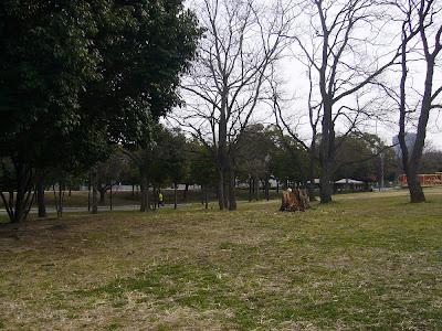 大阪府・久宝寺緑地