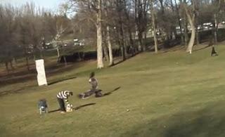 aguila se lleva a un niño en canadá