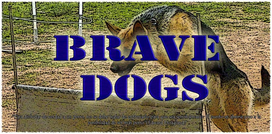 Brave Dogs