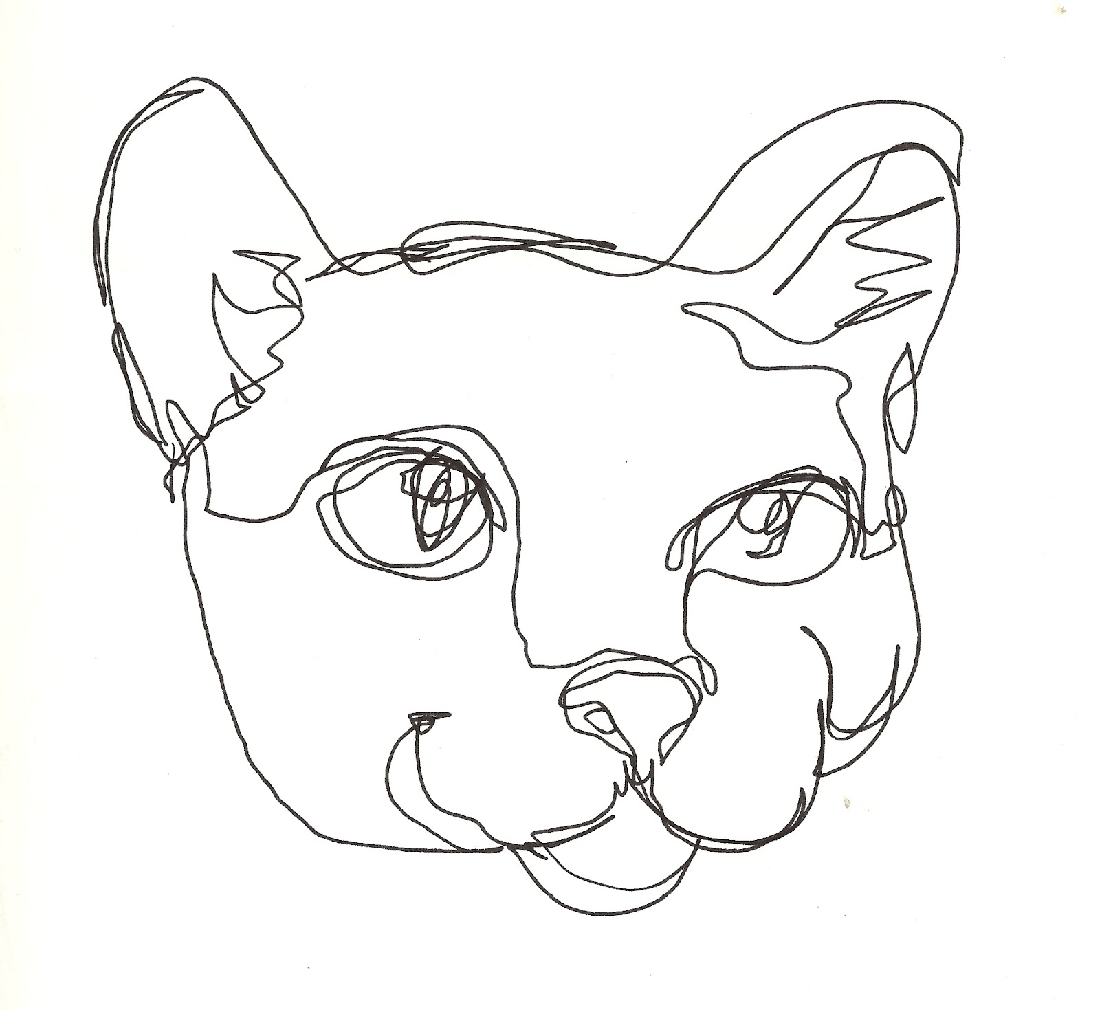 Cat Contour Line Drawing : Blind contours an exhibit