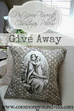 Pillow Giveaway!