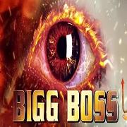 Bigg Boss Season 8 Day 44 Episode 45 - 4th November 2014 | Colors tv