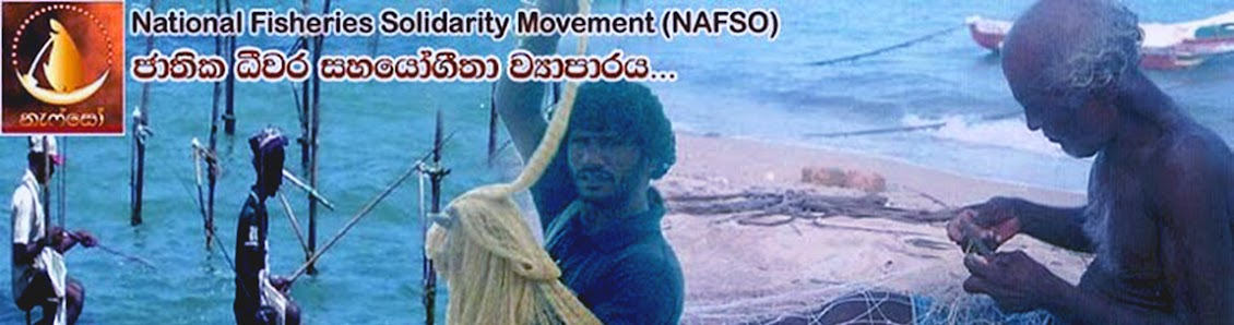 NAFSO:  Towards a Fisher People's Movement