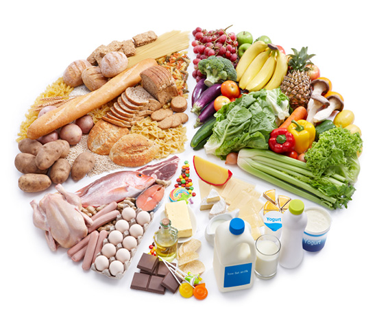 #58 Summary of animal nutrition