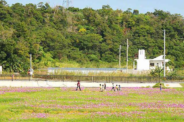 teacher, students, children, flowers, field