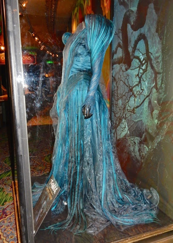 Into the Woods post-curse Witch costume