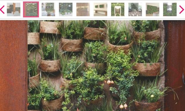 jardim vertical latas:inspiração e diversão: jardim vertical