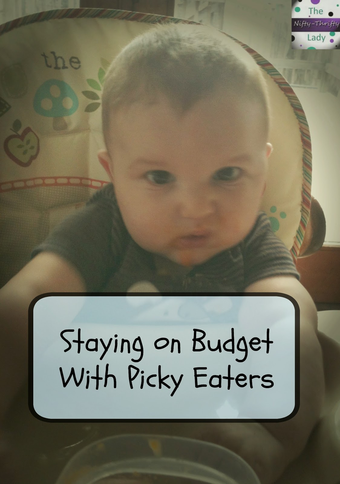 How to stay on budget with picky eater