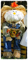 Scarecrow Sam
