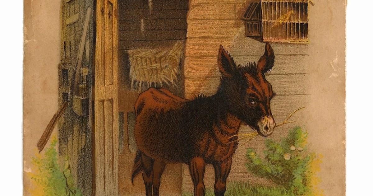 antique images  free digital donkey animal clip art happy