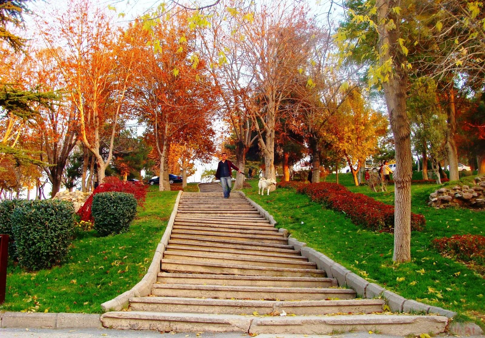 Konya Rehberim: Konya Alaaddin Tepesi