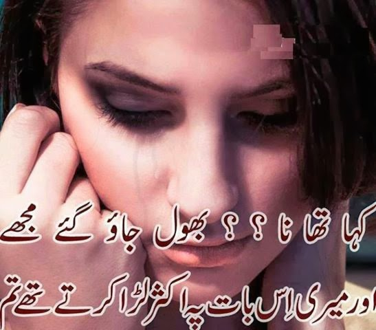 Ghazal\'s World: Kaha tha na?? bhool jao ge mughe, Images Poetry ...