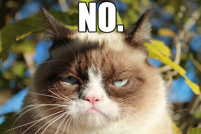 Grumpy Cat Saying No Wallpaper Widescreen