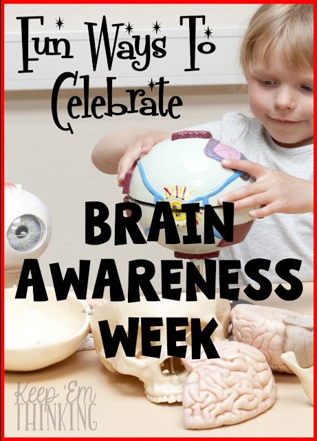 brain, brain awareness, brain activites, brain lessons