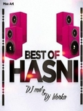 DJ Mel & DJ Blonka-Best Of Hasni 2015