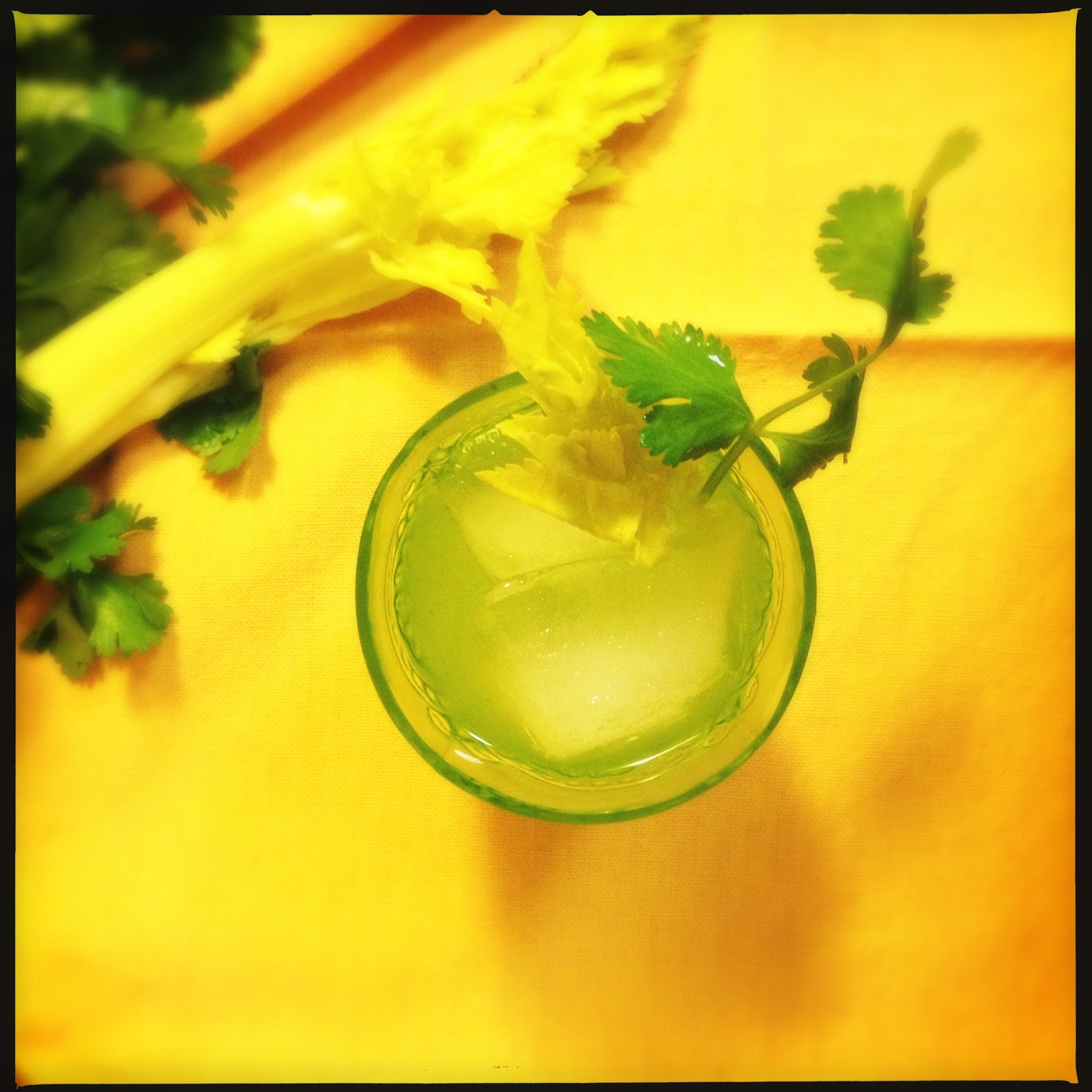 The Lush Chef: Celery & Cilantro Cocktail