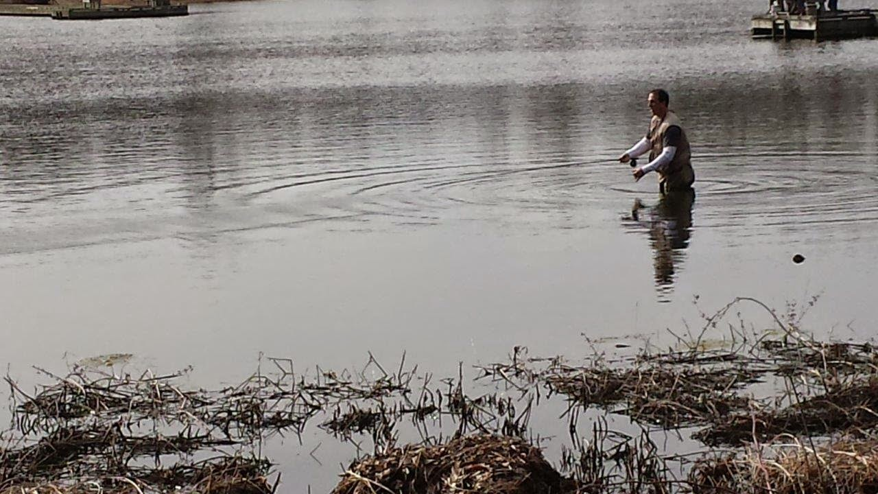 Lake metroparks fishing report ponds stocked and active for Stocked fishing ponds