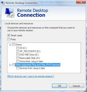 Remote Desktop Session Drives