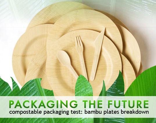 Bamboo Plates5