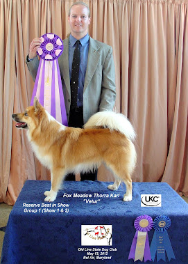 Fox Meadow Thorra Kari takes Reserve Best In Show!