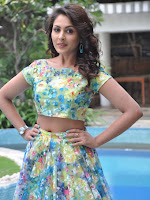 Madhu Shalini latest dazzling photo session-cover-photo
