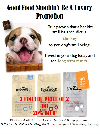 Welcome To Pet Salon Sopra Ginza May Promotion 2 4