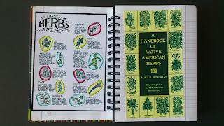 Fairy herbs