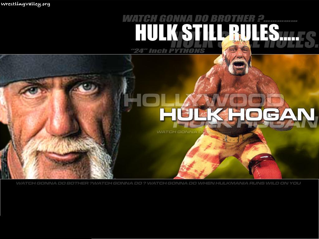 wwe hulk hogan: