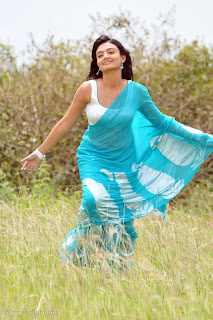 nikitha_narayana_hot_saree_stills_006.jpg